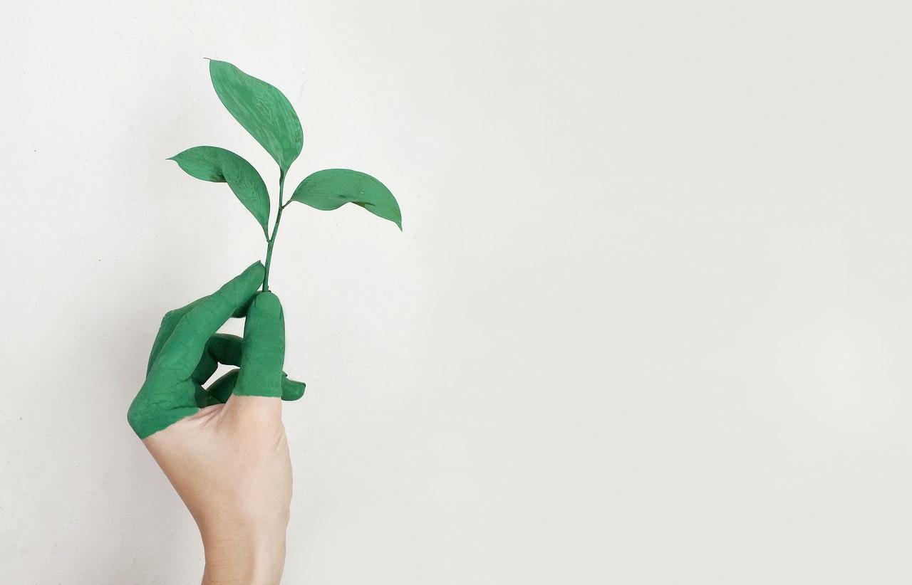 écologie, critère déterminant